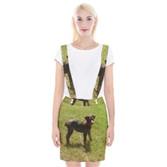 Red Doberman Puppy Suspender Skirt
