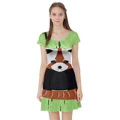 Red Panda Bamboo Firefox Animal Short Sleeve Skater Dress