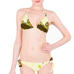 Squirrel Bikini Set