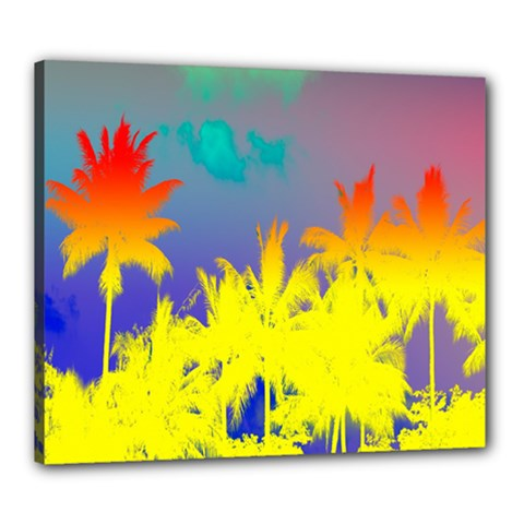 Tropical Cool Coconut Tree Canvas 24  x 20