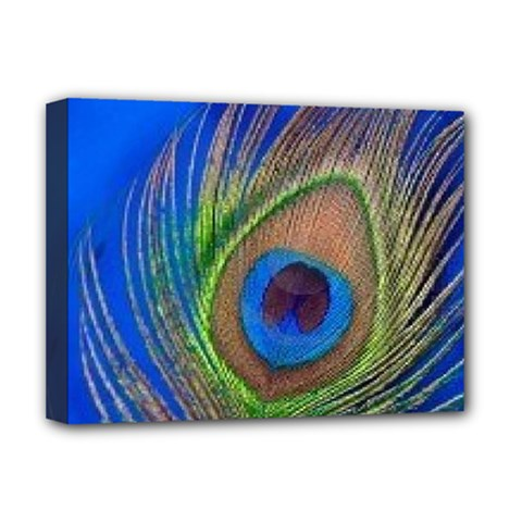 Blue Peacock Feather Deluxe Canvas 16  X 12