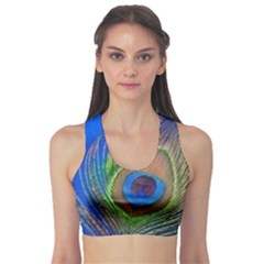 Blue Peacock Feather Sports Bra