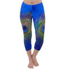 Blue Peacock Feather Capri Winter Leggings