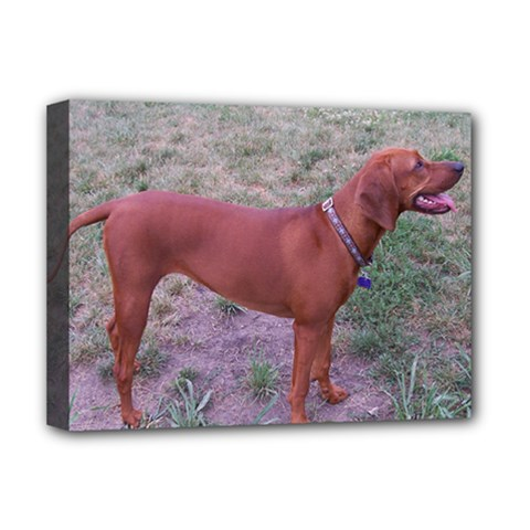 Redbone Coonhound Full Deluxe Canvas 16  x 12