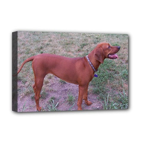 Redbone Coonhound Full Deluxe Canvas 18  x 12