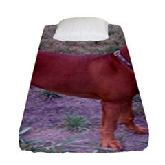 Redbone Coonhound Full Fitted Sheet (Single Size)