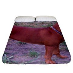 Redbone Coonhound Full Fitted Sheet (King Size)