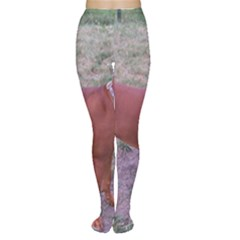 Redbone Coonhound Full Women s Tights