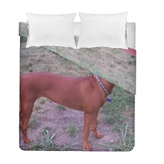 Redbone Coonhound Full Duvet Cover Double Side (Full/ Double Size)