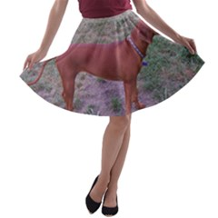 Redbone Coonhound Full A-line Skater Skirt