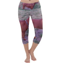 Redbone Coonhound Full Capri Yoga Leggings