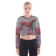 Redbone Coonhound Full Women s Cropped Sweatshirt