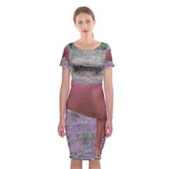 Redbone Coonhound Full Classic Short Sleeve Midi Dress