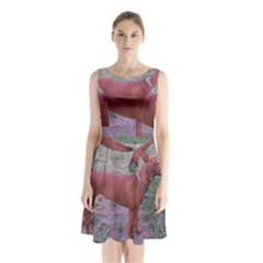 Redbone Coonhound Full Sleeveless Chiffon Waist Tie Dress