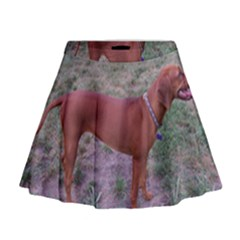 Redbone Coonhound Full Mini Flare Skirt