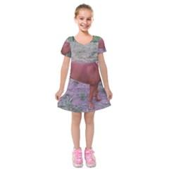 Redbone Coonhound Full Kids  Short Sleeve Velvet Dress