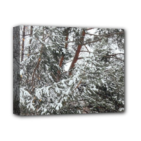 Winter Fall Trees Deluxe Canvas 14  x 11