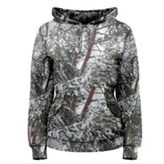 Winter Fall Trees Women s Pullover Hoodie