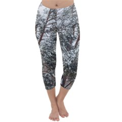 Winter Fall Trees Capri Winter Leggings