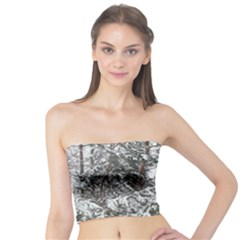 Winter Fall Trees Tube Top