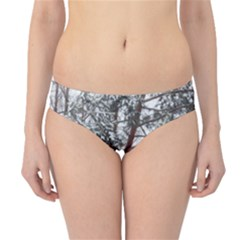 Winter Fall Trees Hipster Bikini Bottoms
