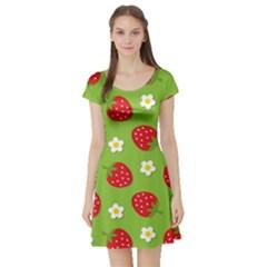 Strawberries Flower Floral Red Green Short Sleeve Skater Dress