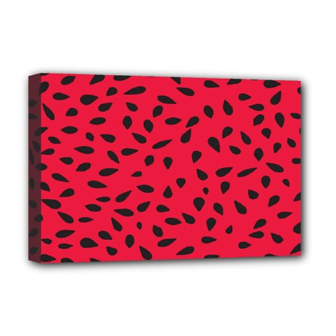 Watermelon Seeds Deluxe Canvas 18  x 12