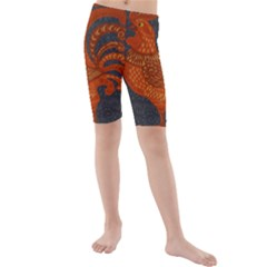 Chicken year Kids  Mid Length Swim Shorts