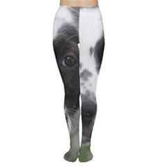 English Setter Women s Tights
