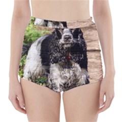 Black Roan English Cocker Spaniel High-Waisted Bikini Bottoms