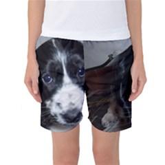 Black Roan English Cocker Spaniel Puppy Women s Basketball Shorts