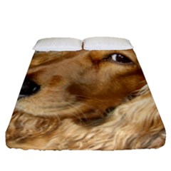 Red Cocker Spaniel Red Fitted Sheet (Queen Size)
