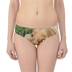 Red Cocker Spaniel Red Hipster Bikini Bottoms