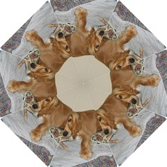 Red Cocker Spaniel Puppy Hook Handle Umbrellas (Small)