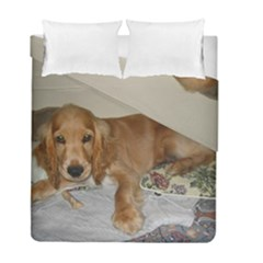 Red Cocker Spaniel Puppy Duvet Cover Double Side (Full/ Double Size)