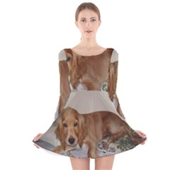 Red Cocker Spaniel Puppy Long Sleeve Velvet Skater Dress