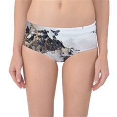 Birds Crows Black Ravens Wing Mid-Waist Bikini Bottoms