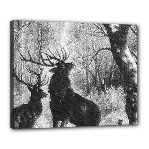 Stag Deer Forest Winter Christmas Canvas 20  X 16