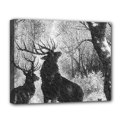 Stag Deer Forest Winter Christmas Deluxe Canvas 20  X 16