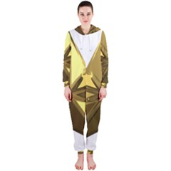 Stars Gold Color Transparency Hooded Jumpsuit (Ladies)