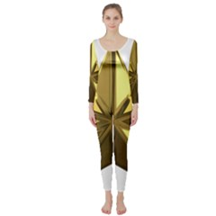 Stars Gold Color Transparency Long Sleeve Catsuit