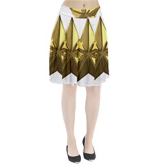 Stars Gold Color Transparency Pleated Skirt