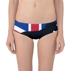 Flat Coated Retriever Silo England United Kingdom Classic Bikini Bottoms