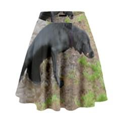Flat Coated Retriever Wet High Waist Skirt