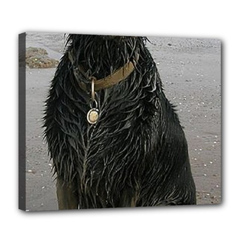 Flat Coated Retriever Muddy Wet Deluxe Canvas 24  x 20