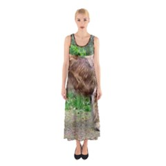 Leonberger Full Sleeveless Maxi Dress