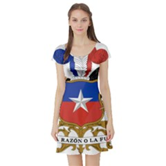 Coat of Arms of Chile Short Sleeve Skater Dress