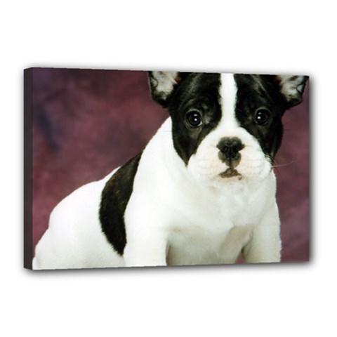 Brindle Pied French Bulldog Puppy Canvas 18  x 12
