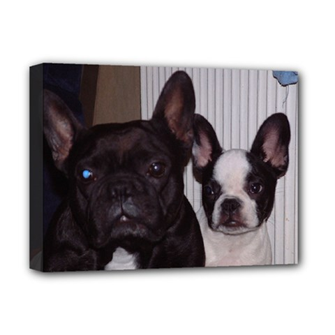 2 French Bulldogs Deluxe Canvas 16  x 12