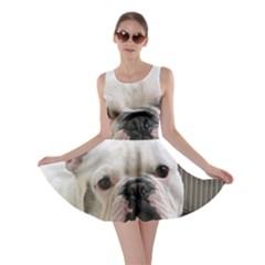 French Bulldog White Skater Dress